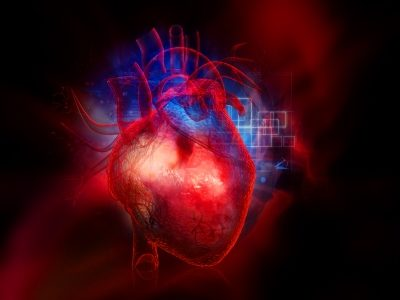 Heart Blood Flow Modelling Could Reduce Stroke Risk
