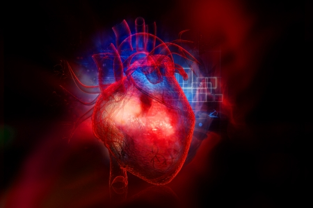 Heart Blood Flow Modelling Could Reduce Stroke Risk