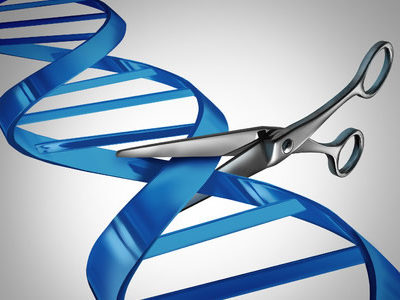 Improvements to CRISPR-Cas9 See 50-Fold Increase in Accuracy of Gene Edits