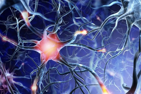 Potential Anticancer Drug Could Serve as Novel Alzheimer's Disease Treatment