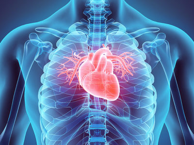 New Porcn Inhibitor Cancer Drug Could Help Repair Heart Damage