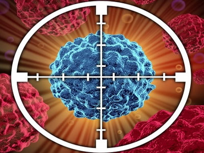 Protein That Induces Tumor Cell Apoptosis Could be Used for Cancer Treatment