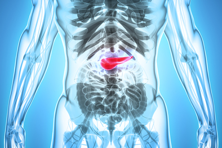Artificial Pancreas Shown to Be Effective for Patients with Type 2 Diabetes
