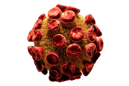 Study Suggests Suppression of HIV Virus May be an Effective Treatment Strategy