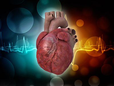 Potential New Drug Could Prevent Heart Failure After Heart Attack