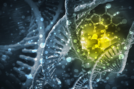Gene Therapy Shown to Reverse Metabolic Disease in Obese Mice