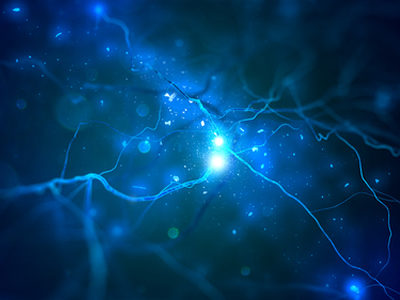 fMRI Scans Reveal Nerve Stimulation Can Ease Suffering in PTSD Patients