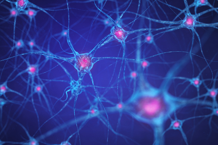 New Targets Identified for the Treatment of Epilepsy
