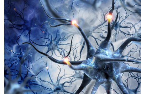Researchers Protect Introduced Brain Cells from T-Cell Attack Without Immune-Suppressing Drugs