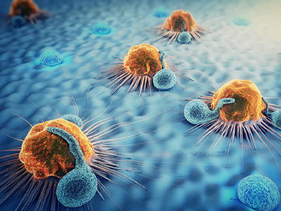 Recently Discovered Killer T-Cell Raises Hopes of Universal T-Cell Cancer Therapy